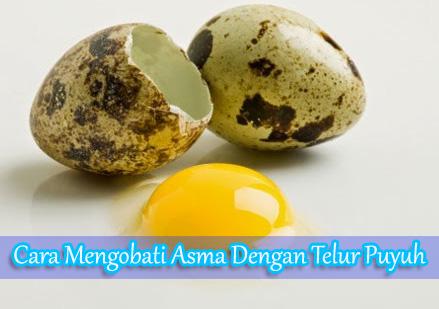 Cara Mengobati Asma Dengan Telur Puyuh